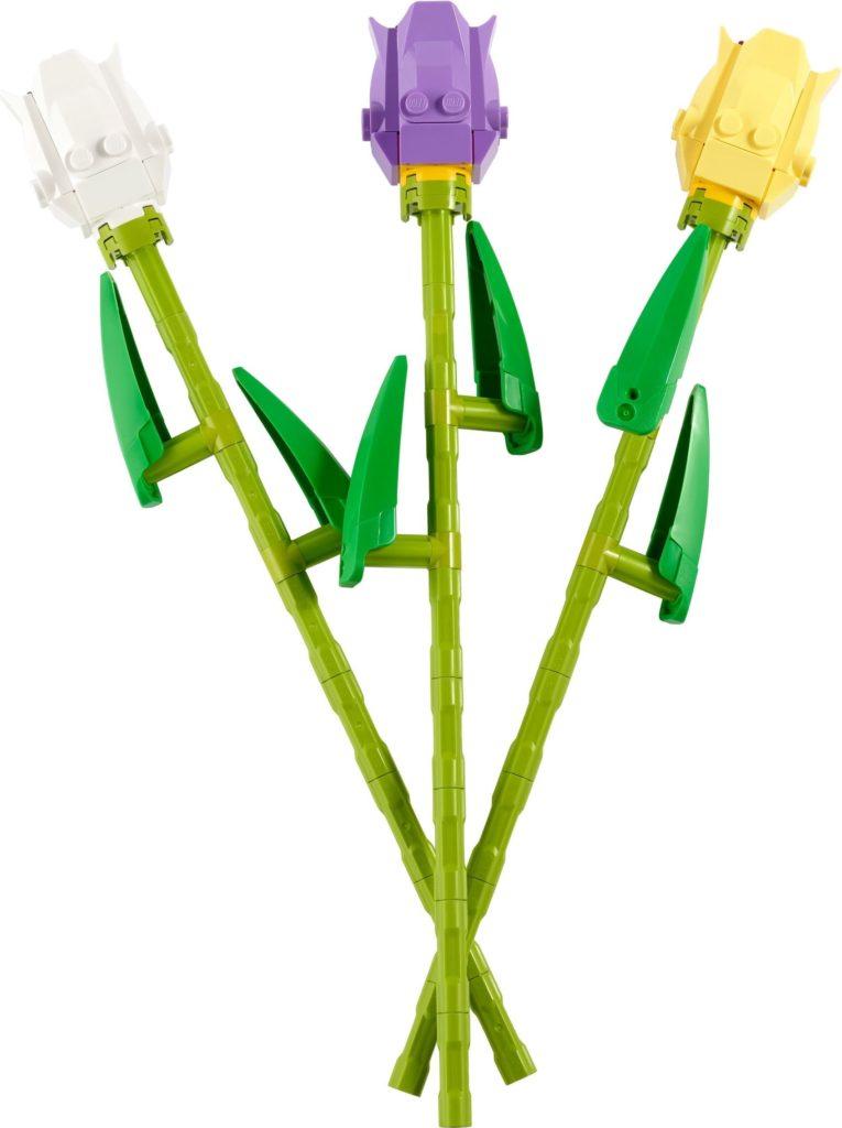 40461 Tulips 1 1