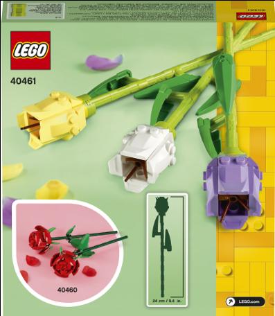 40461 Tulips Box 02