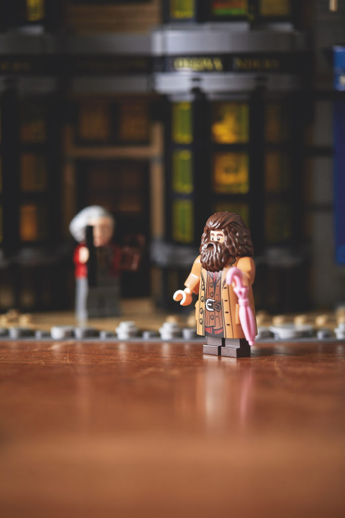 75978 Diagon Alley LEGO Harry Potter Lifestyle Resized 4