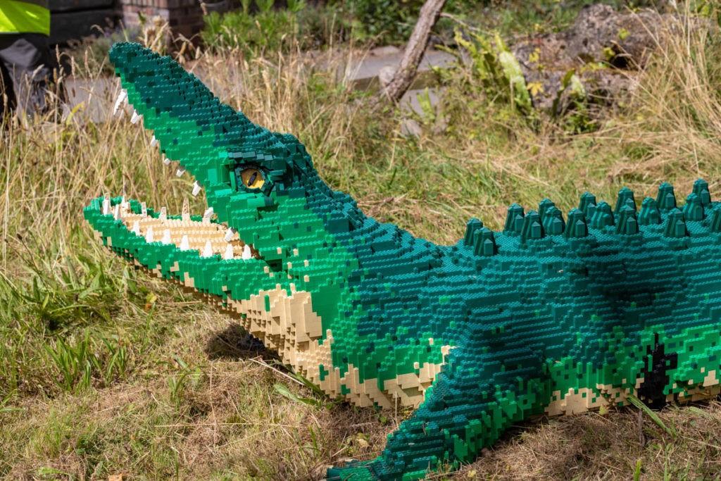 BRICKLIVE Animals Paignton Zoo