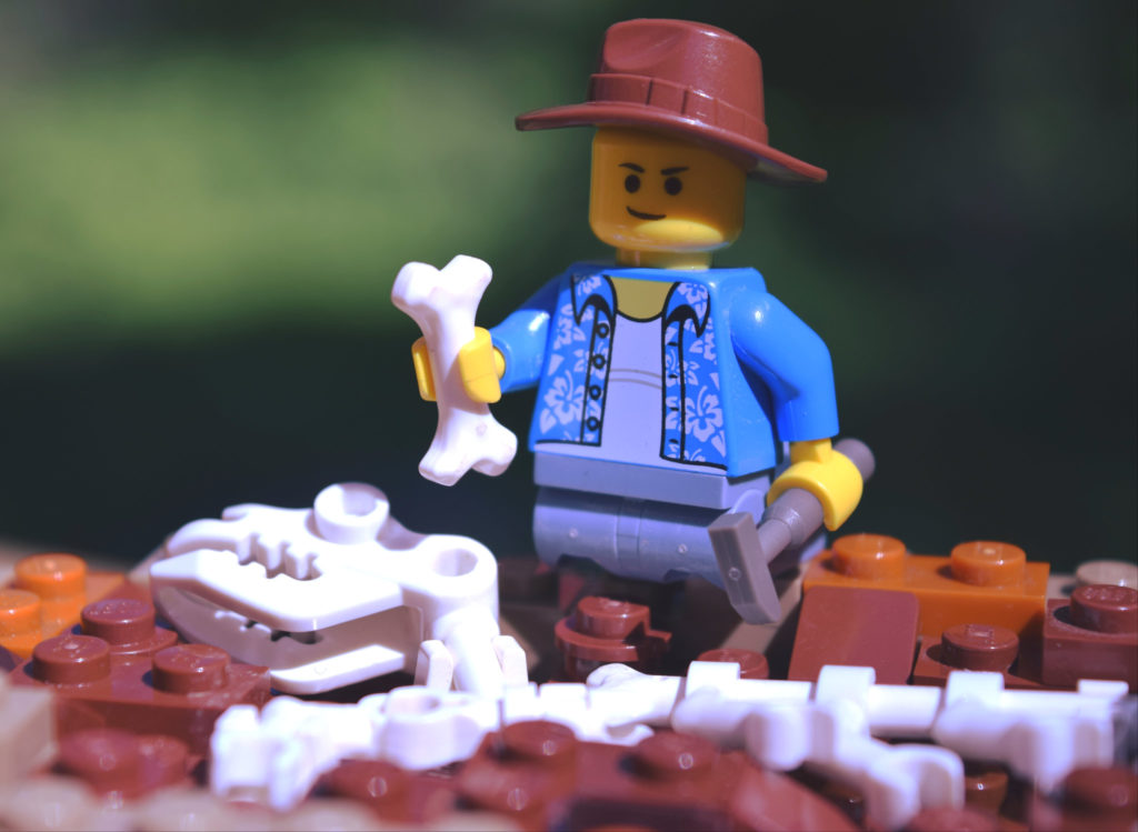 Brick Pic Archaeology