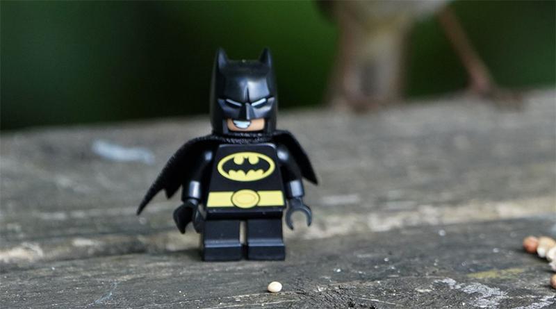 Brick Pic Batman And Robin Featured
