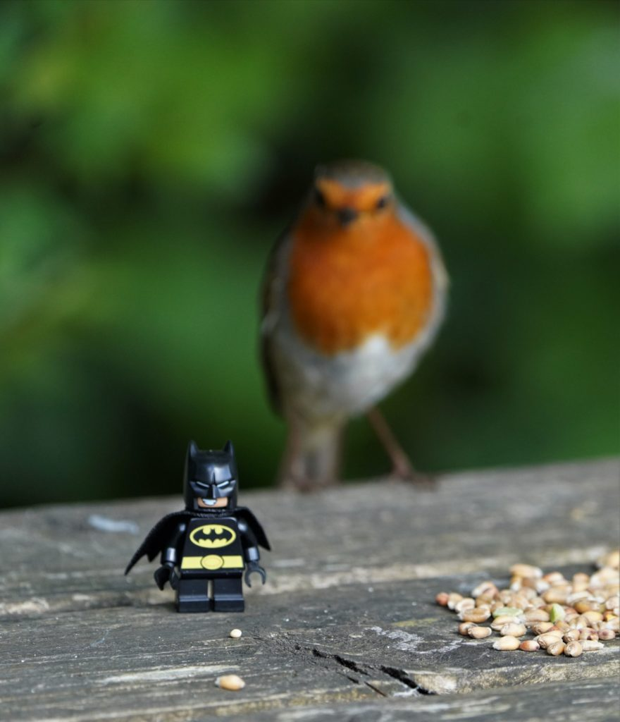 Brick Pic Batman And Robin