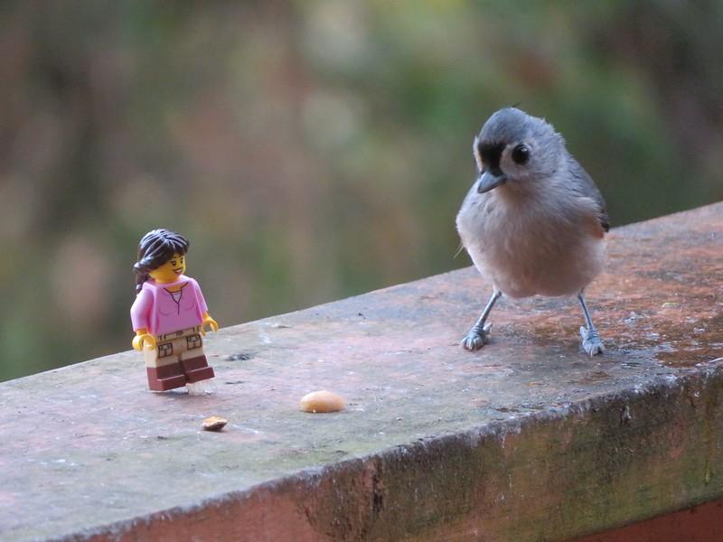 Brick Pic Bird 1