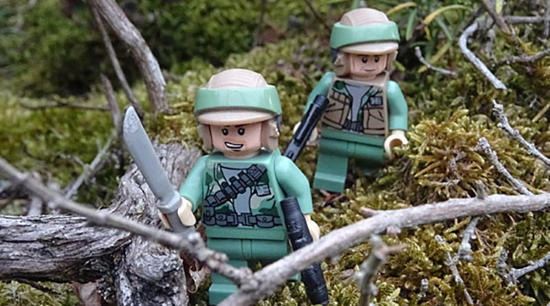 Brick Pic Endor Forest Featured 800x445