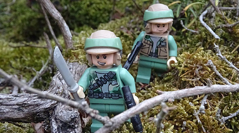 Brick Pic Endor Forest Featured