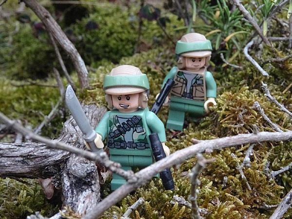 Brick Pic Endor Forest