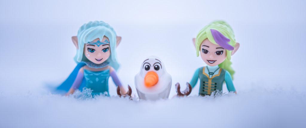Brick Pic Frozen Elves