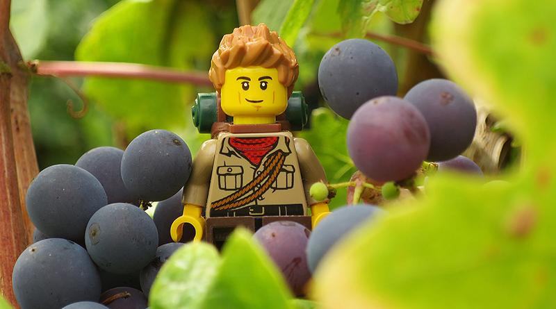 Brick Pic Grape Explorer Featrued