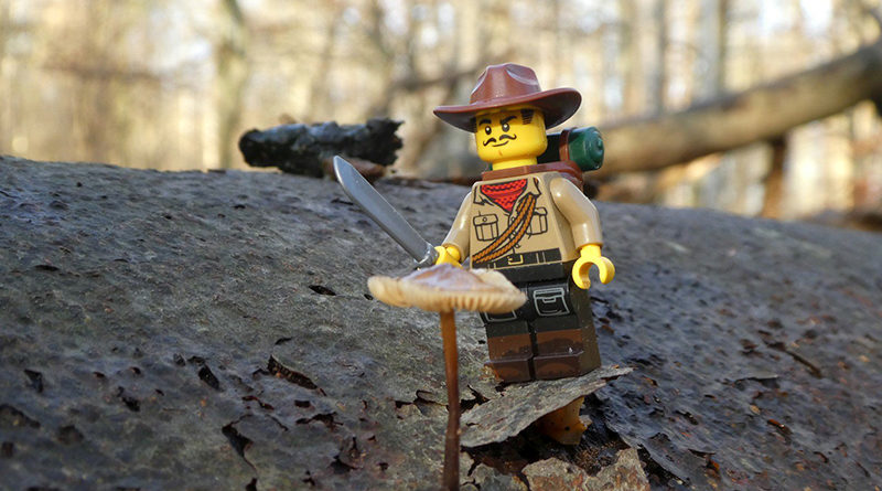 Brick Pic Johnny Thunder Featured 1 800x445