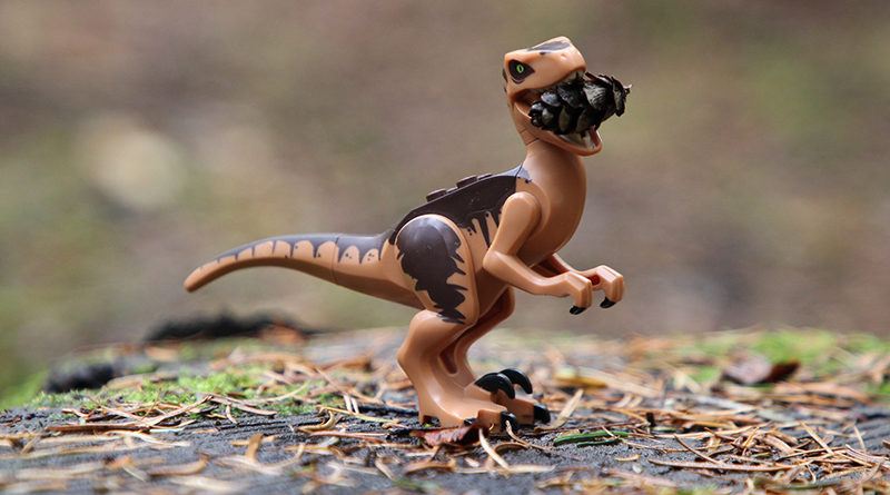 Brick Pic Raptor Snacks Featured 800x445