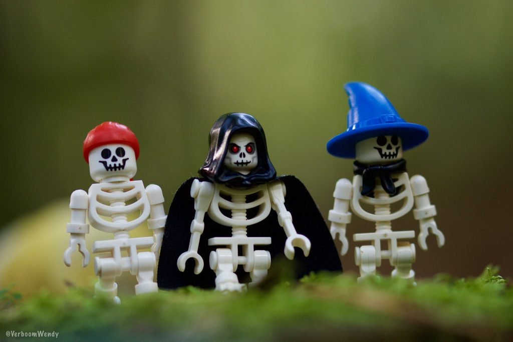 Brick Pic Skeletons 1024x683
