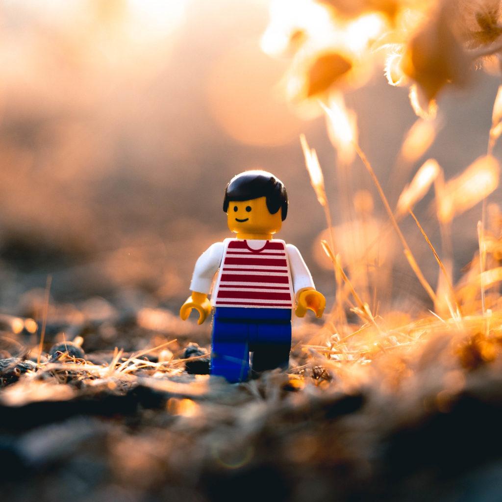 Brick Pic Walk 1024x1024