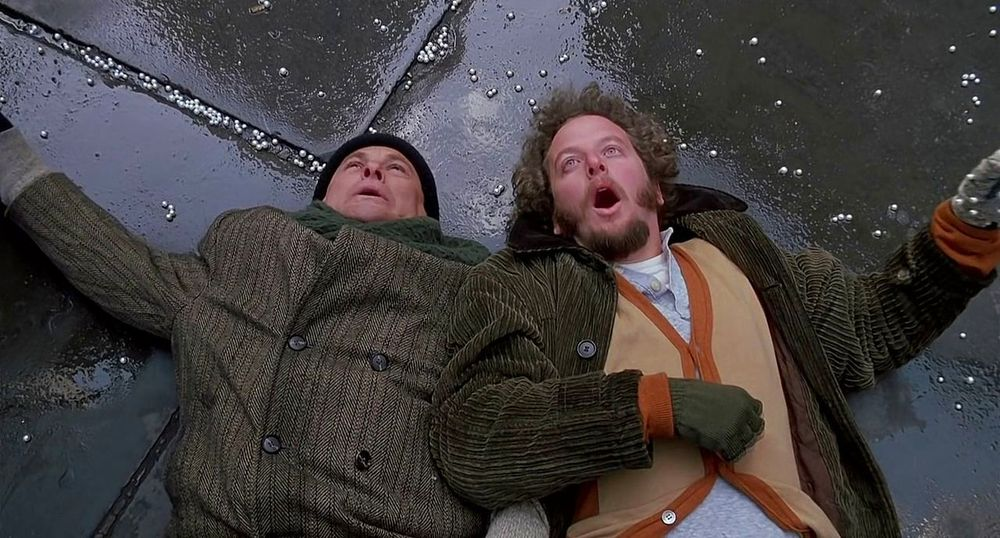 Home Alone Harry and Marv