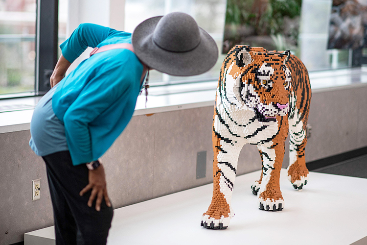 LEGO Art Of The Brick Tiger