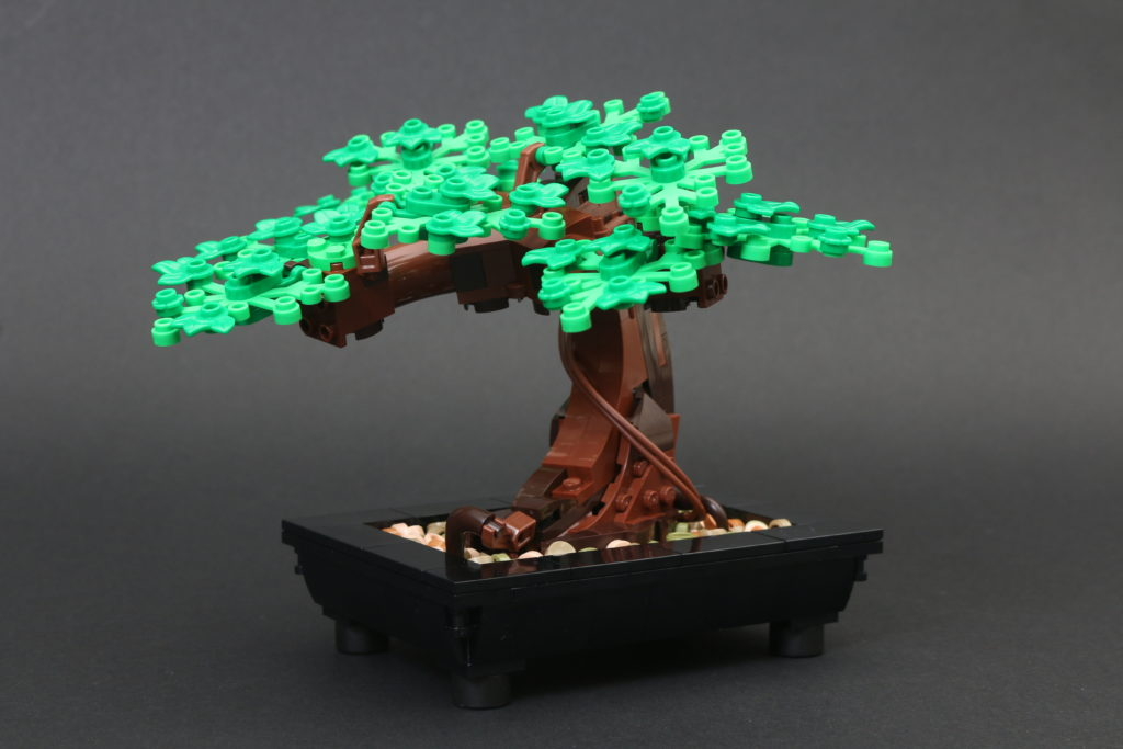 LEGO Botanical Collection 10281 Bonsai Tree Review 17
