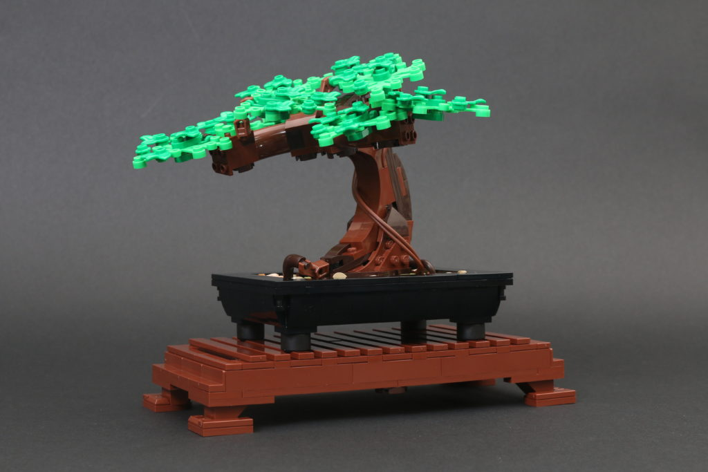 LEGO Botanical Collection 10281 Bonsai Tree Review 19