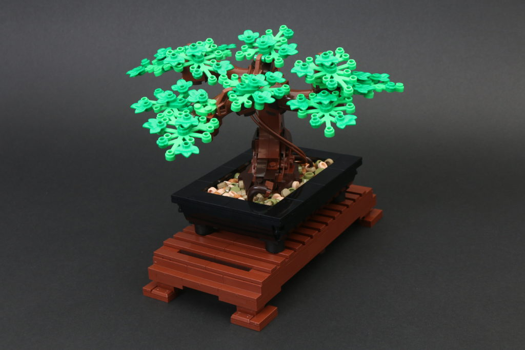 LEGO Botanical Collection 10281 Bonsai Tree Review 20