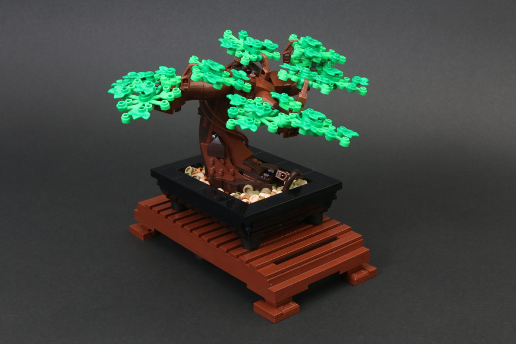 LEGO Botanical Collection 10281 Bonsai Tree Review 21