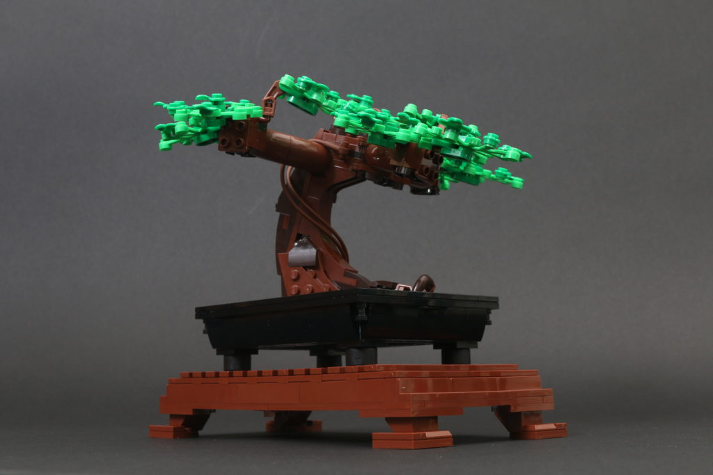 LEGO Botanical Collection 10281 Bonsai Tree Review 22