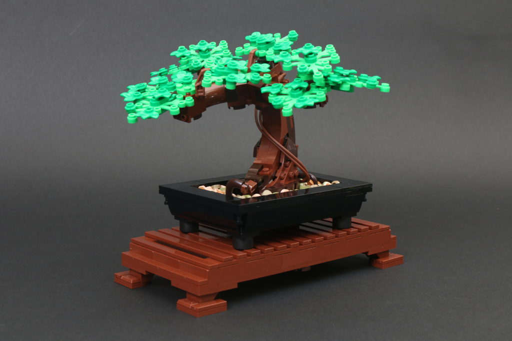 LEGO Botanical Collection 10281 Bonsai Tree Review 24