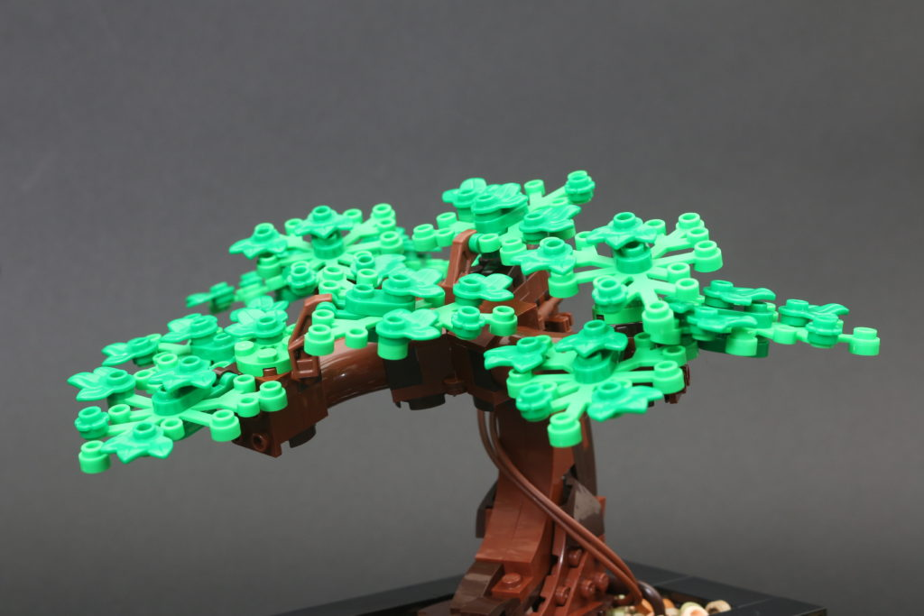 LEGO Botanical Collection 10281 Bonsai Tree Review 25