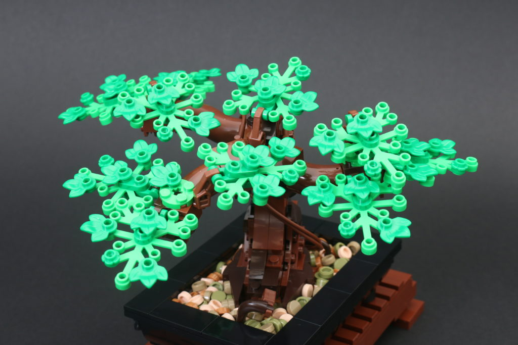 LEGO Botanical Collection 10281 Bonsai Tree Review 28