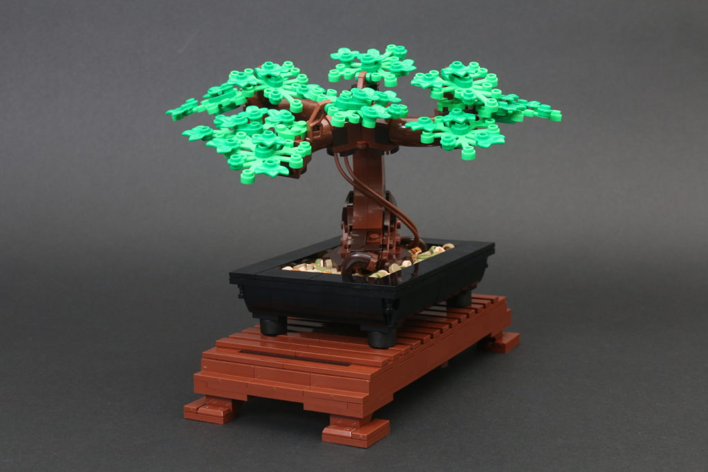 LEGO Botanical Collection 10281 Bonsai Tree Review 29