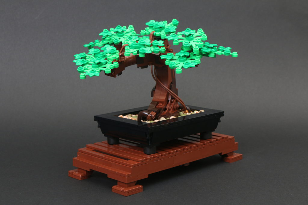 LEGO Botanical Collection 10281 Bonsai Tree Review 33