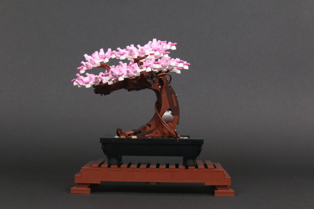 LEGO Botanical Collection 10281 Bonsai Tree Review 42