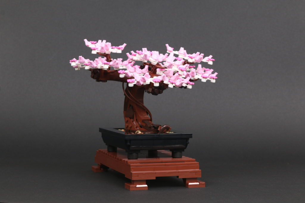 LEGO Botanical Collection 10281 Bonsai Tree Review 44