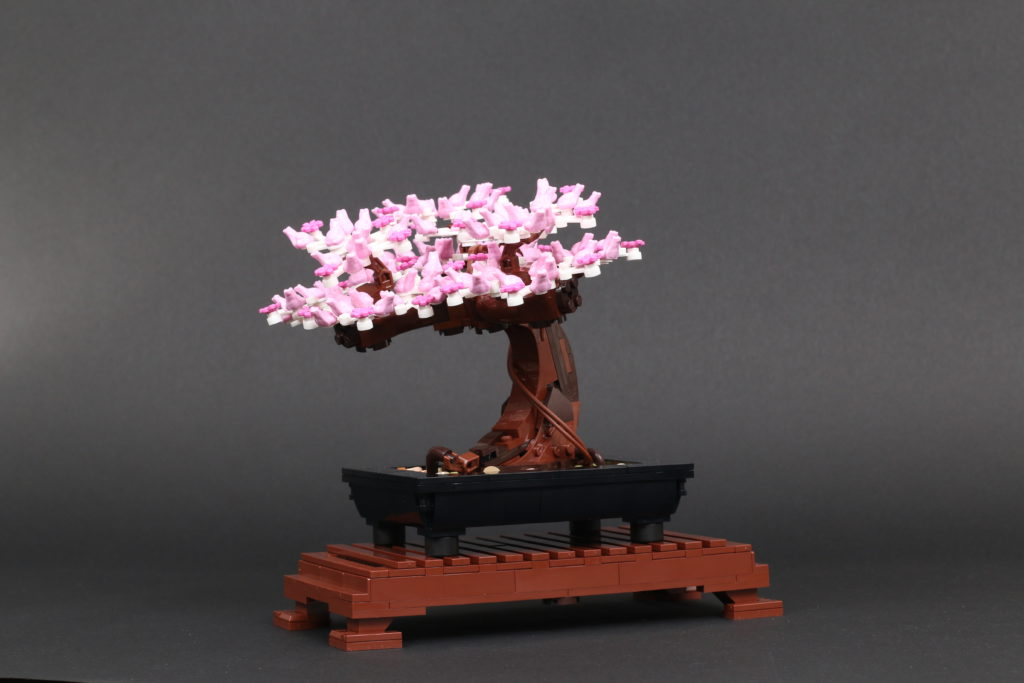 LEGO Botanical Collection 10281 Bonsai Tree Review 46