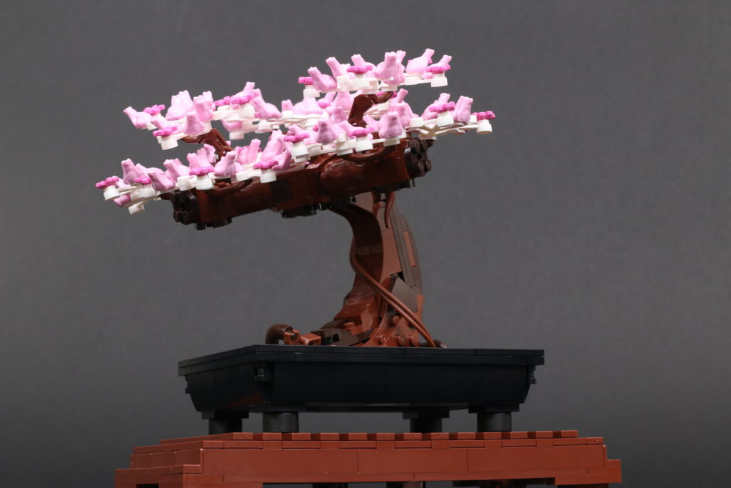 LEGO Botanical Collection 10281 Bonsai Tree Review 47