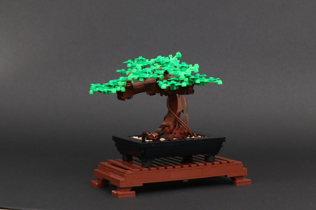 LEGO Botanical Collection 10281 Bonsai Tree Review 48