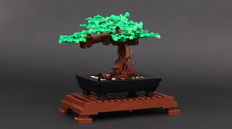 LEGO Botanical Collection 10281 Bonsai Tree Review Title 800x445