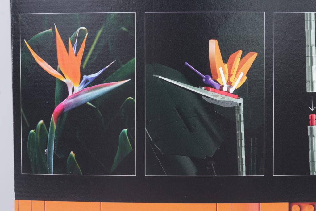 LEGO Botanical Collection 10289 Bird Of Paradise Reveal 4