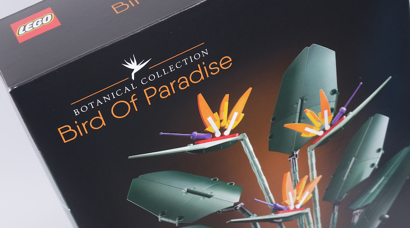 LEGO Botanical Collection 10289 Bird Of Paradise Reveal Title