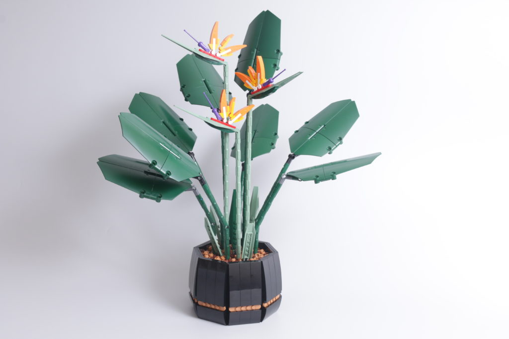 LEGO Botanical Collection 10289 Bird Of Paradise review 7