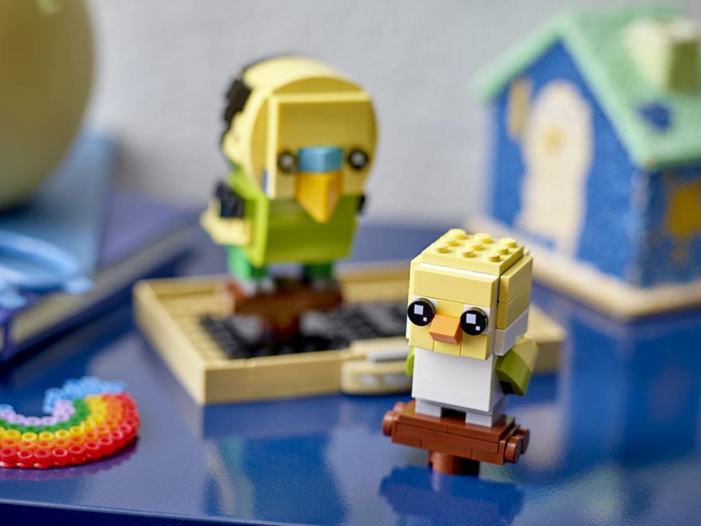 LEGO BrickHeadz 40443 Budgie 1