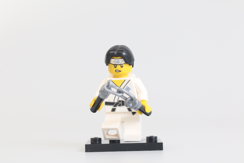 LEGO Collectible Minifigures Series 20 Review 5