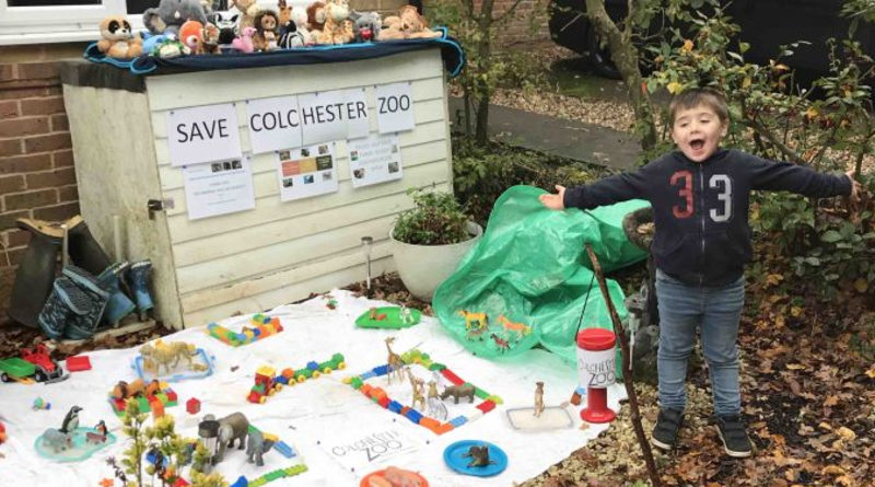 LEGO Five year old colchester zoo fundraiser featured