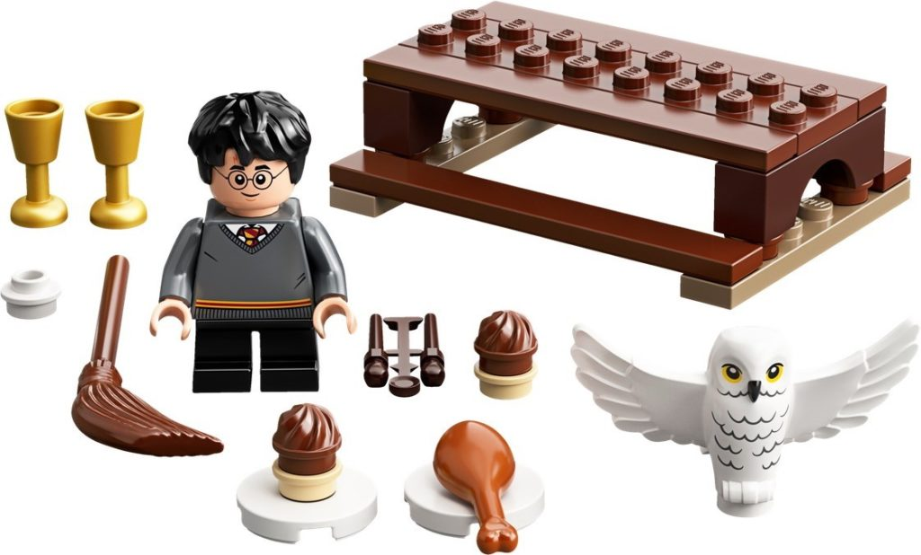 LEGO Harry Potter 30420 Harry Potter and Hedwig