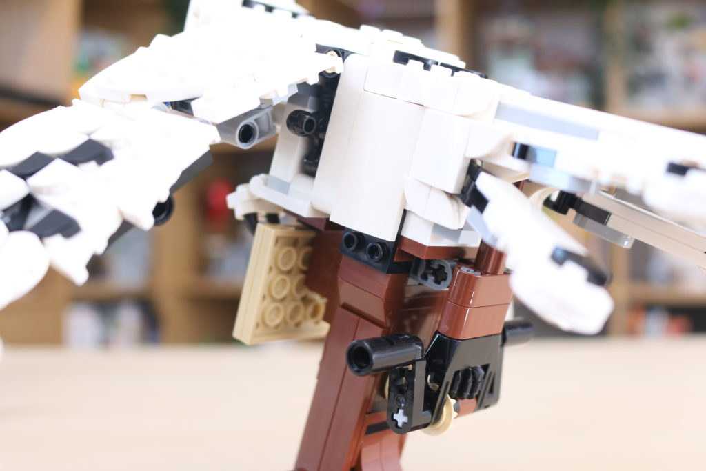 LEGO Harry Potter 75979 Hedwig Review 18