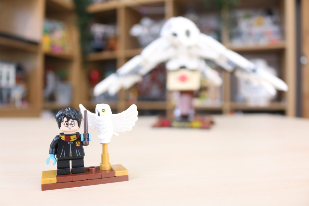LEGO Harry Potter 75979 Hedwig Review 2