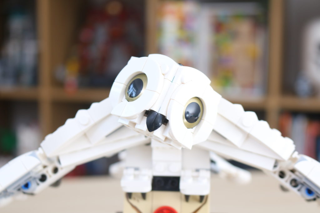LEGO Harry Potter 75979 Hedwig Review 3