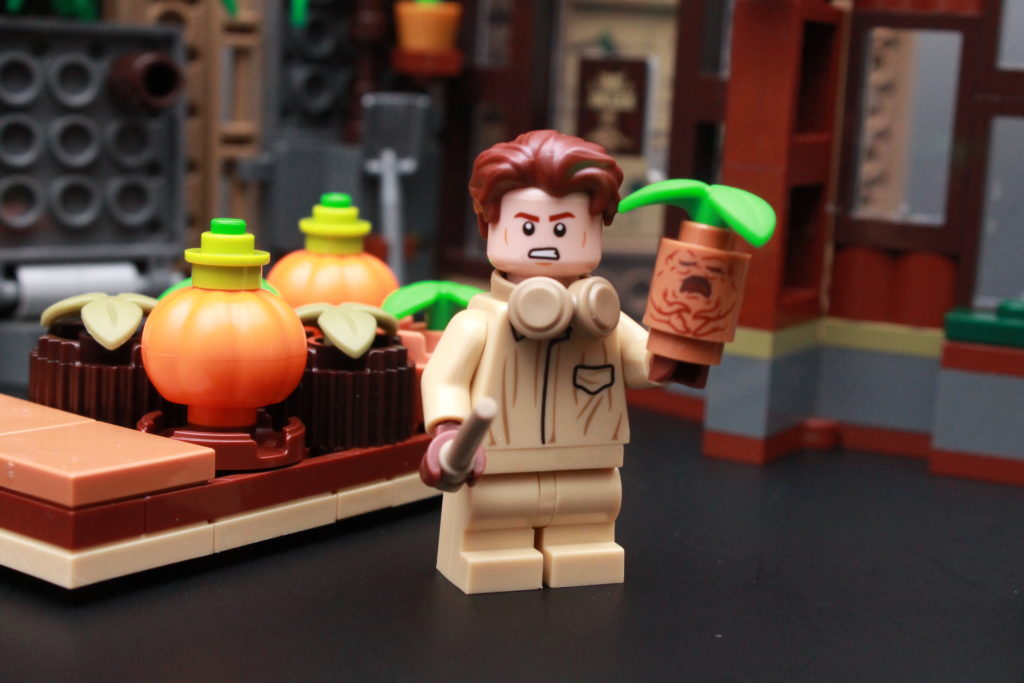 LEGO Harry Potter 76384 Hogwarts Moment Herbology Class Review 5