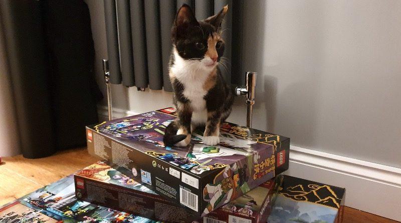 LEGO Kittens Brick Fanatics featured