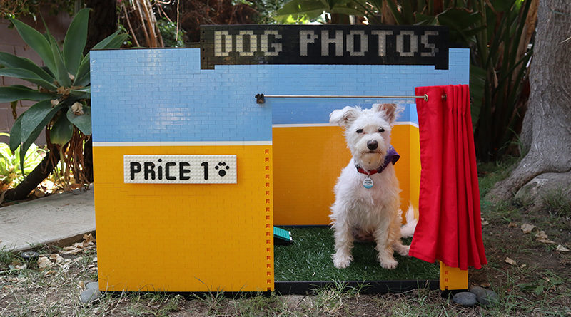 LEGO MINDSTORMS Dog Selfie Booth Featured 800x445