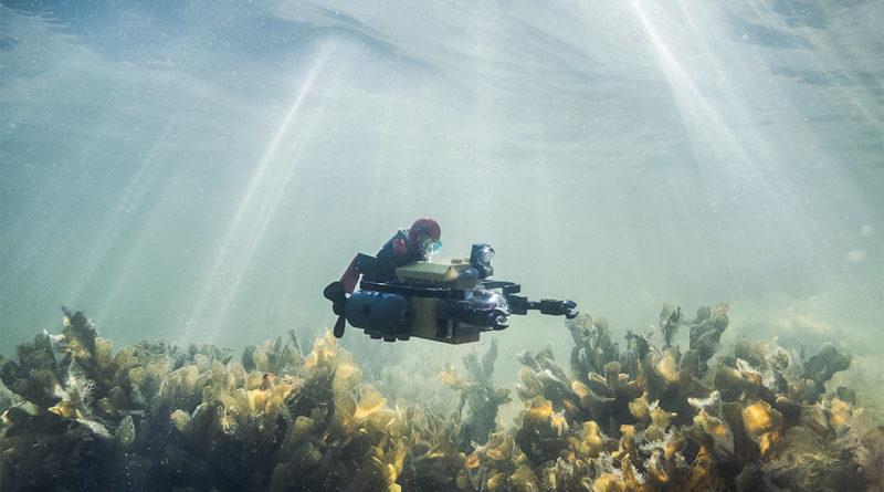 LEGO Underwater
