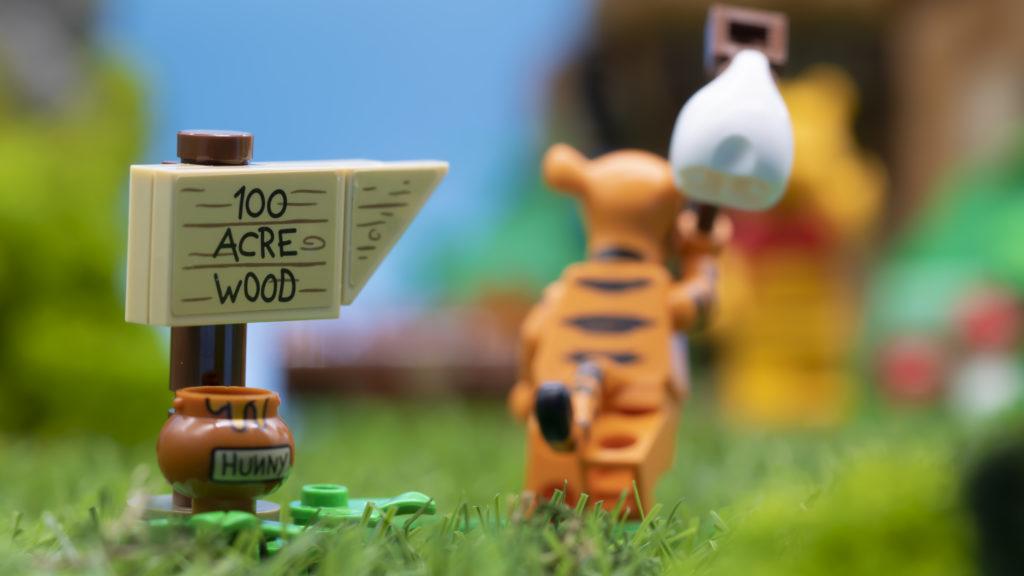 LEGO ideas 21326 Winnie The Pooh 48